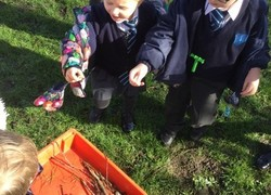 Science Week - Beech Class