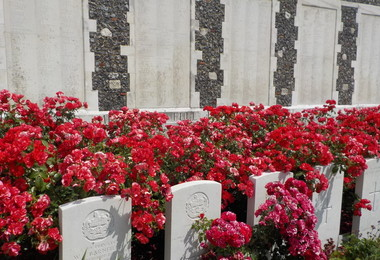 Graves with poppies on Battlefields Trip 2019