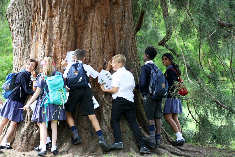 Form 2 hug a tree on Science Trip to Cambridge 2019