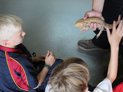 Lizards on Lower Shell visit to Raptor Foundation 2019