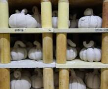 4th Form pumpkins drying out before kiln firing
