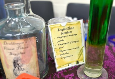 Harry Potter Night Launches Festival of Literature