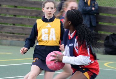 Prep School Girls Net House Points