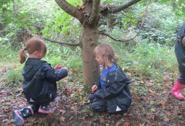 Year 1 Forest School Learning
