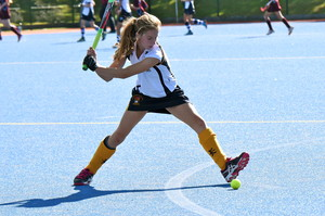Hockey Player IAPS Competition