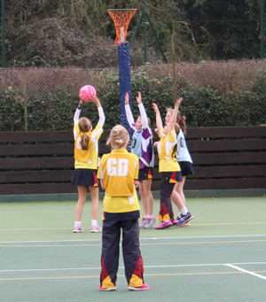 Prep School House Netball