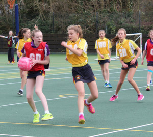 Prep School House Netball Matches