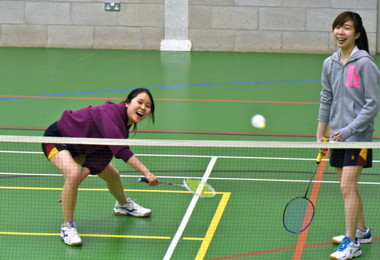 Senior School Badminton Players v Felsted