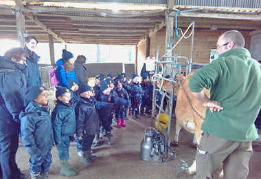 Reception visit to Boydells Dairy Farm