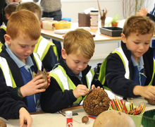Year 1 Boys studying nature table Hyde Hall