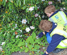 Collecting nature items Yr 1 Trip to RHS Hyde Hall