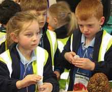 Pupils studying nature table at Year 1 Hyde Hall Trip