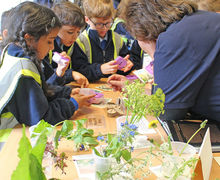 Year 1 Studying Nature Table on Hyde Hall Trip