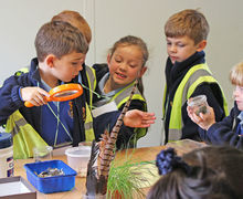 Year 1 Pupils Studying Nature at Hyde Hall