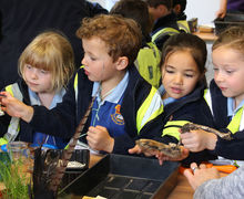 Year 1 Studying nature table at RHS Hyde Hall