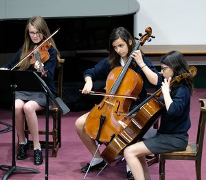 Strings in Chamber Music Concert May 2017