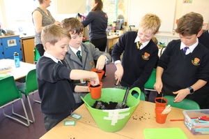 Green Fingered Shell pupils