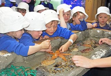 Reception Studying Fish at Sealife Centre Southend