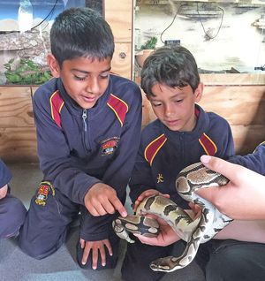 Shell boys josh amman with snake raptor foundation