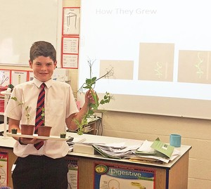2vl Pupil with plant for Science Project