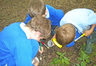 Year 2 boys looking for mini beasts in hatfield forest