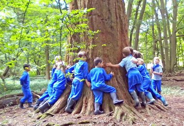 Year 2 pupils around tree in hatfield forest