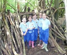 Year 2 tree house hatfield forest