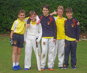 Prep school house cricket westfield boys
