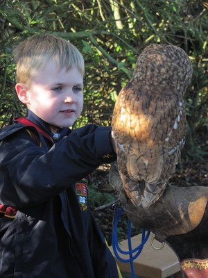 Prep School pupil with an owl