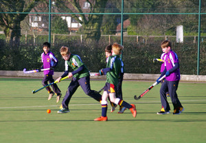 F1 & F2 Grimwade v Newbury in House Hockey