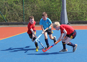Shell hockey players in league competitions 2018