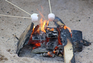 F2 Roasting Marshmallows on Beach in Cornwall