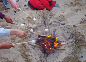 F2 marshmallows on the beach on Cornwall trip