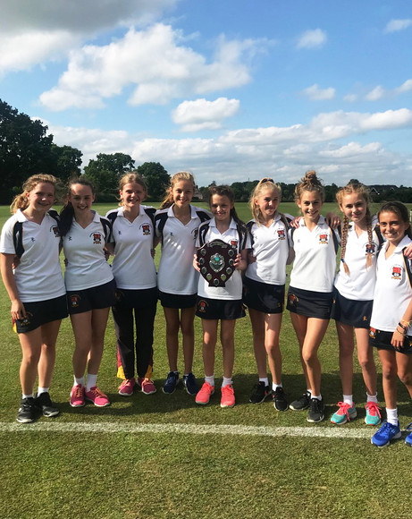 U12A district rounders champions june 2018