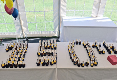 Founders Day Cupcakes in Marquee