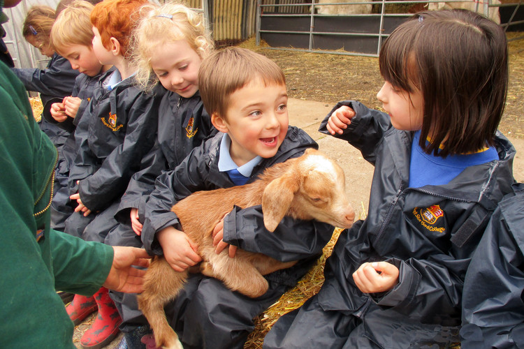 Reception pupils holding lamb at boydells farm