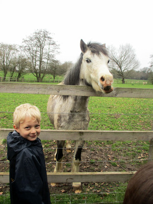 Reception pupil with pony at Boydells Farm