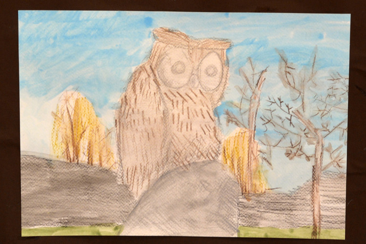 Owl outside ps library drawing by yr 2 pupil