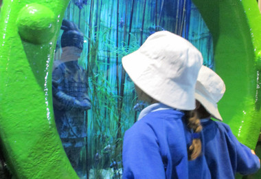 Pupils Have a Whale of a Time at Sea Life Centre