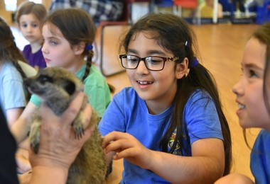 Yr 2 meet new animals on Animal Encounter Afternoon 2019