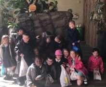 Colchester Zoo Trip