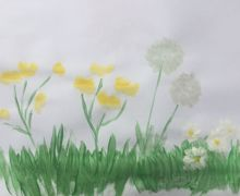Dandelion puffs and grass daisies 2