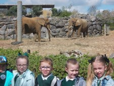 Colchester Zoo Trip 2