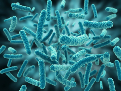 The Human Microbiome: do not underestimate microbes!