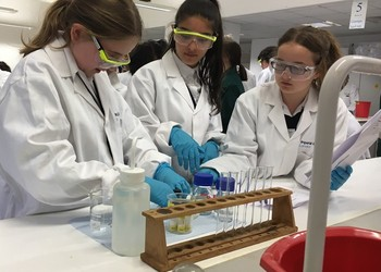 Year 8 visit Salters' Festival of Chemistry at Imperial College London