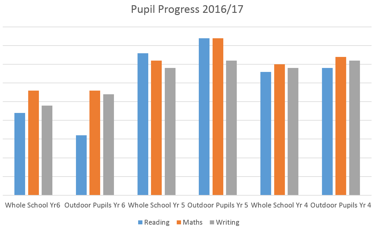 Pupil progress 2016 17