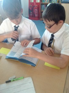 Aslans finding synonyms (2)