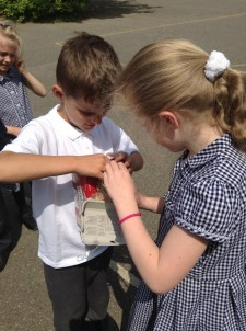 Elmer Class science experiments (4)
