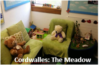 Cordwalles  The Meadow