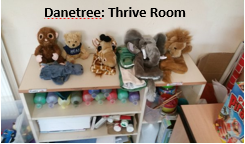 Danetree  Thrive Room